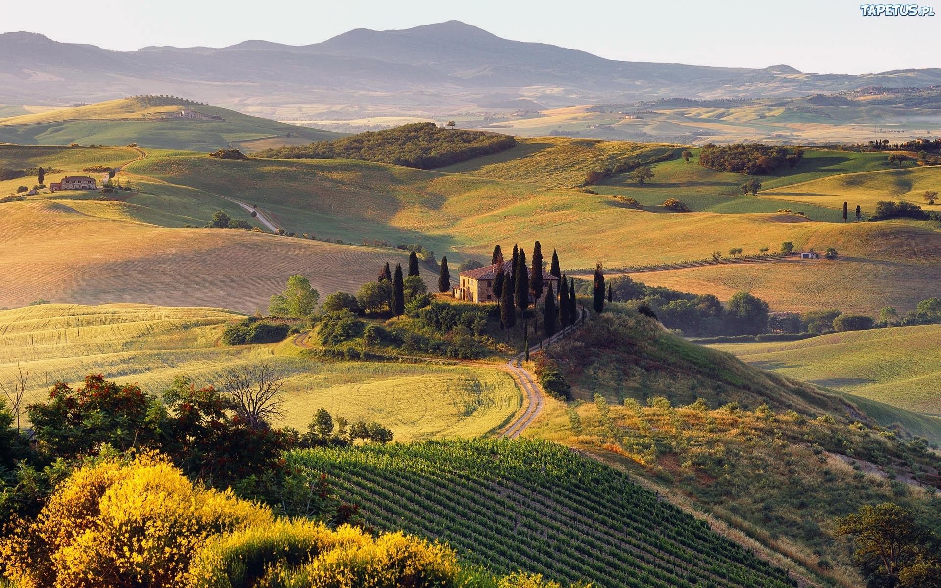 Wycieczki jesienne dla wielbicieli wina